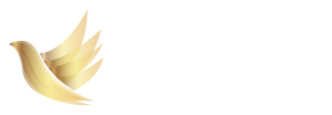 Aspirations Coaching Services Logo